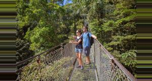 Costa Rica Rainforest  Vacations