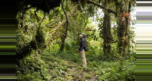 Ecuador Rainforest  Vacation Ideas