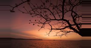 Panama Romantic Vacations